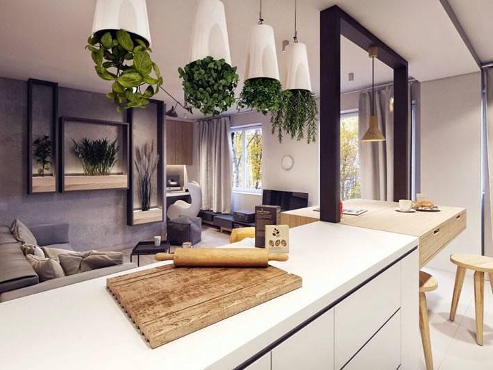 подвесные вазоны для выращивания трав на кухне фото