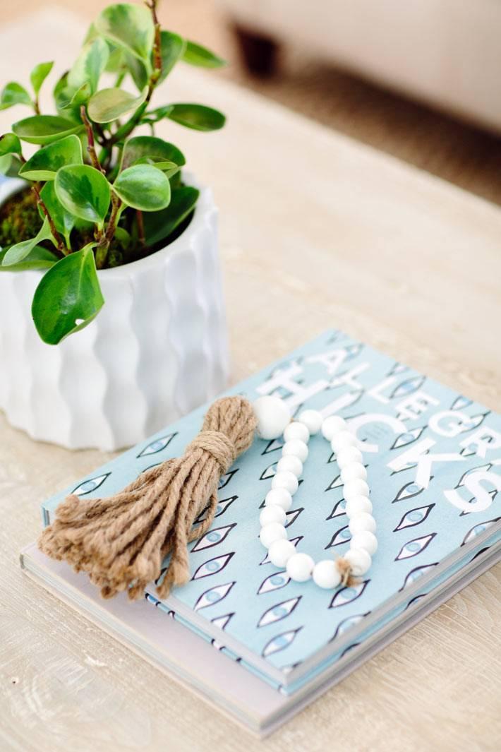 Комнатное растение на журнальном столике в гостиной фото