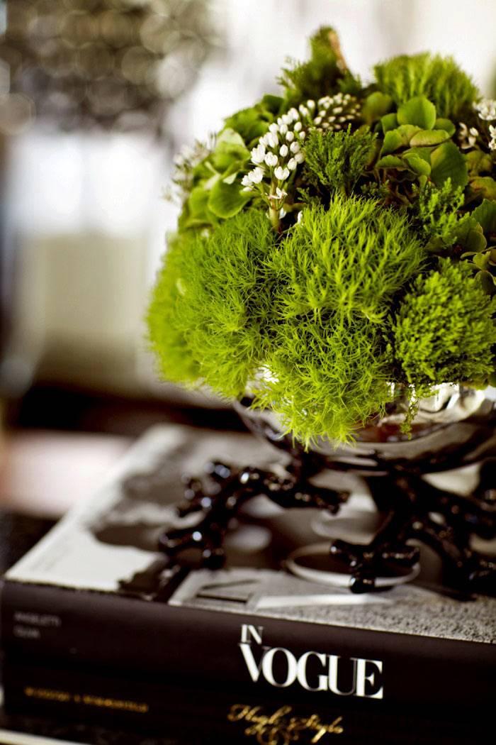 Украшение интерьера дома с помощью живых растений фото