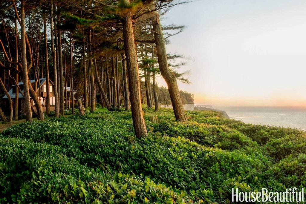 Загородный дом на природе возле океана фото