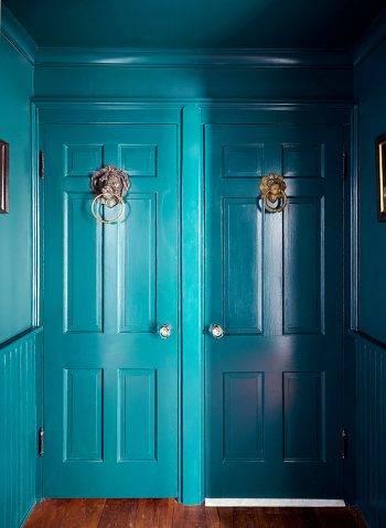 Латунные дверные молоточки с львиной головой на синей двери фото