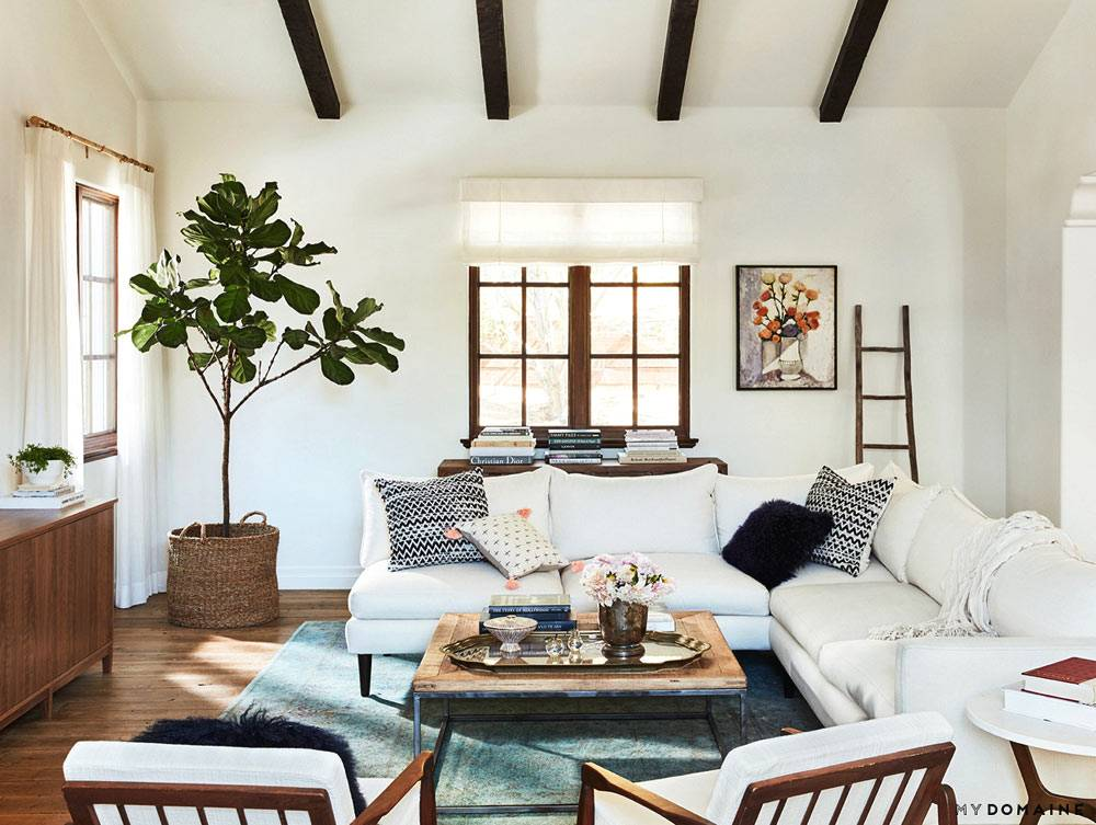 Зеленое дерево оживляет белый интерьер комнаты фото