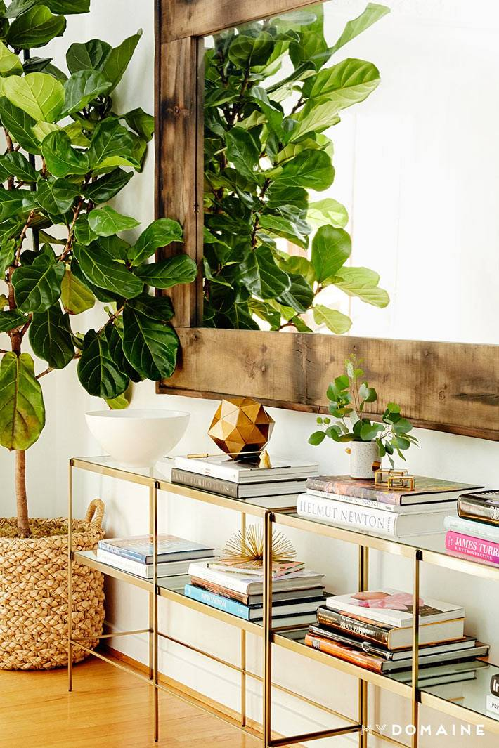красивый интерьер дома Нины Добрев с комнатными растениями