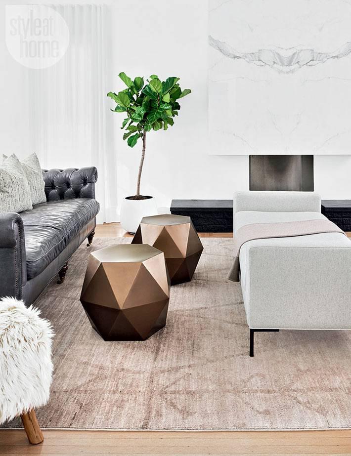 комнатное дерево-фикус в белом вазоне в гостиной