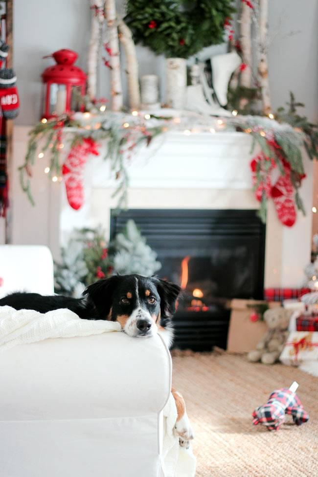 Новогодние детали в оформлении дома в Канаде
