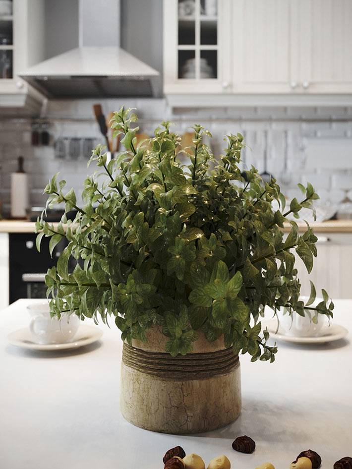 зелёное растением и приятные мелочи в интерьере кухни
