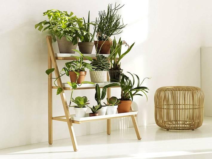 деревянная стремянка для цветов в интерьере