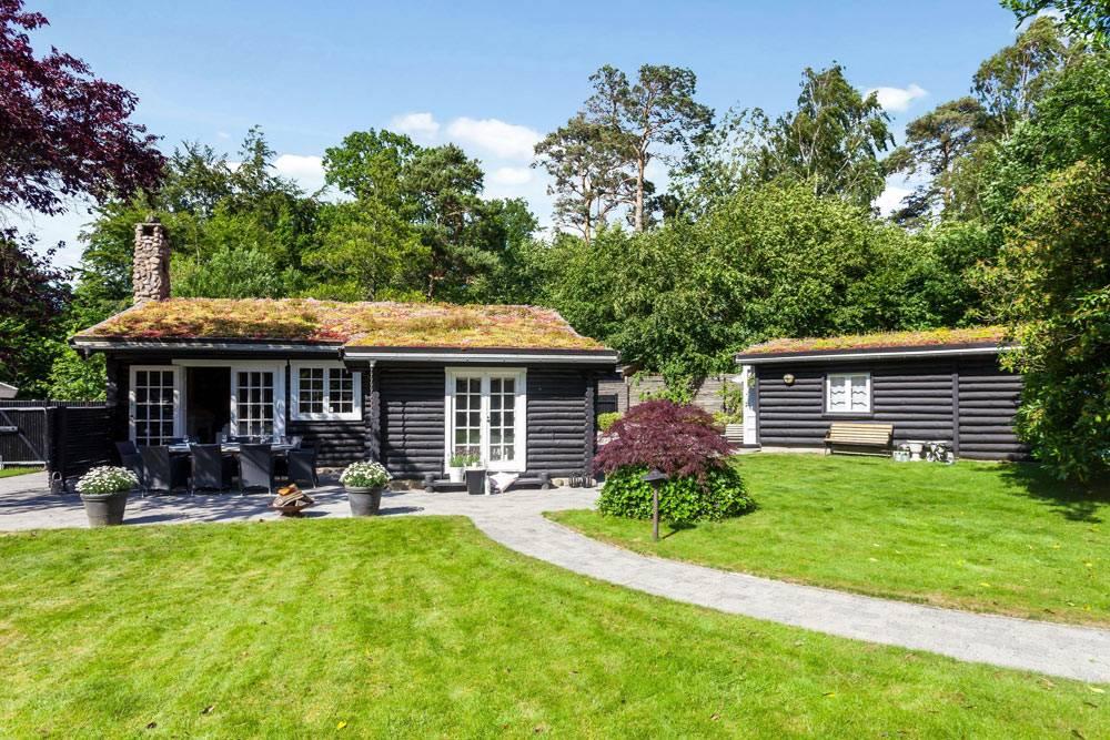 Эко-дизайн интерьера бревенчатого дома с травой на крыше