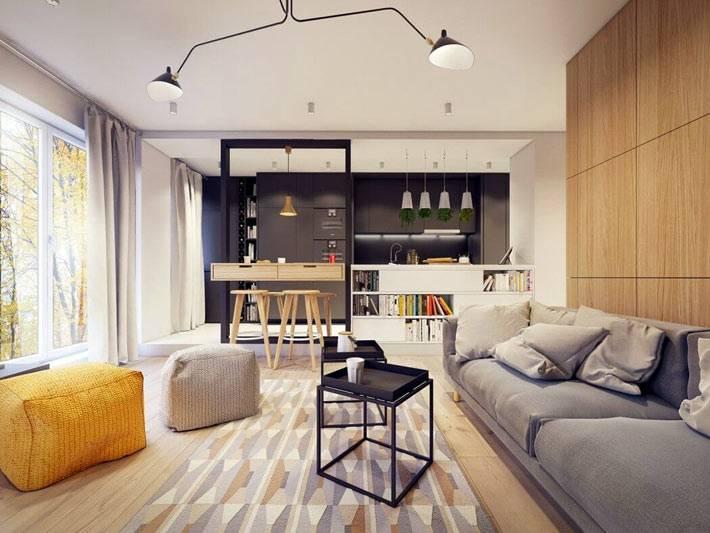 гостиная комната совмещена с кухней фото