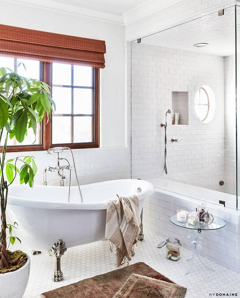 Возле окна в ванной поставили большой зеленый цветок