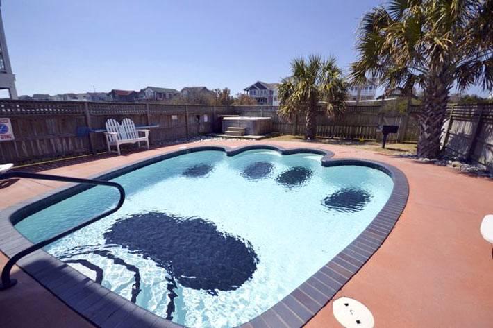 бассейн в виде собачей лапки фото