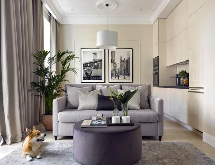 диван делит квартиру-студию на зоны фото