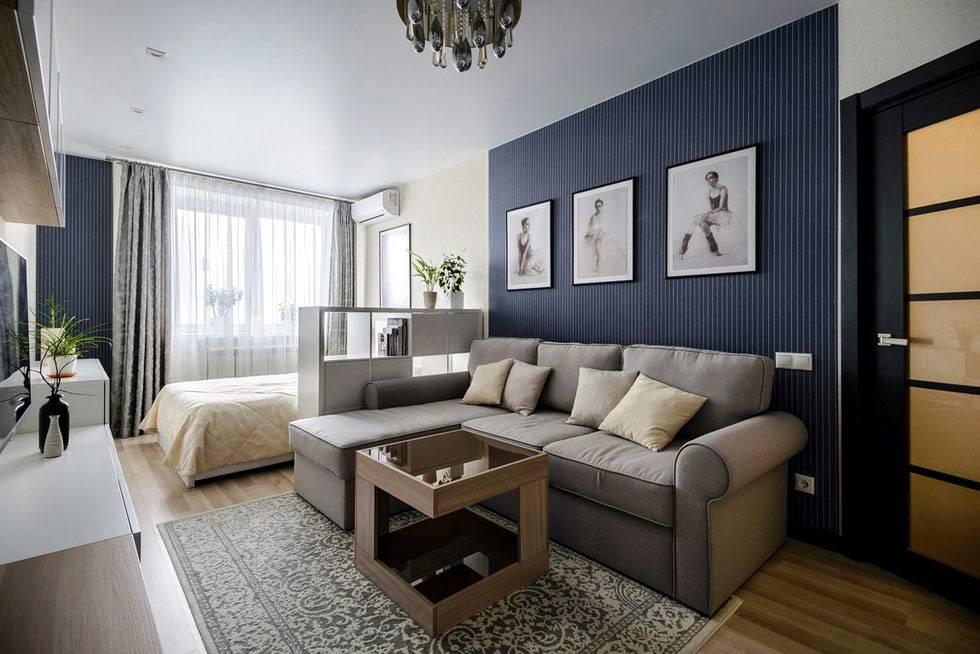 однокомнатная квартира с отдельными зонами для гостиной и спальни