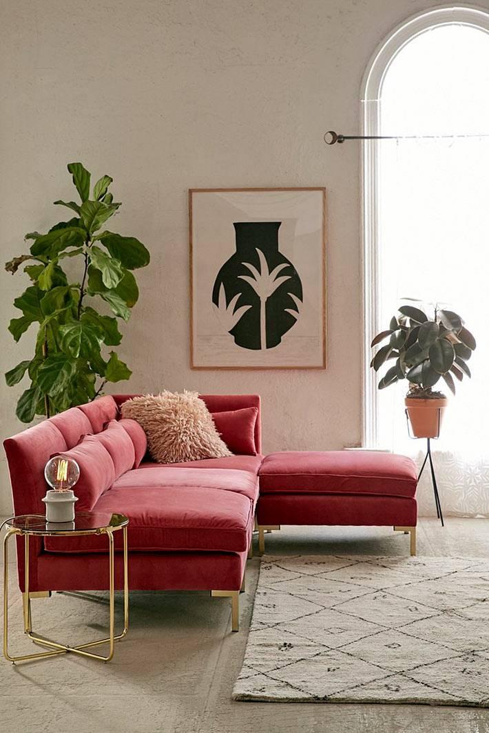 красный диван из бархатной ткани рядом с фикусом в доме