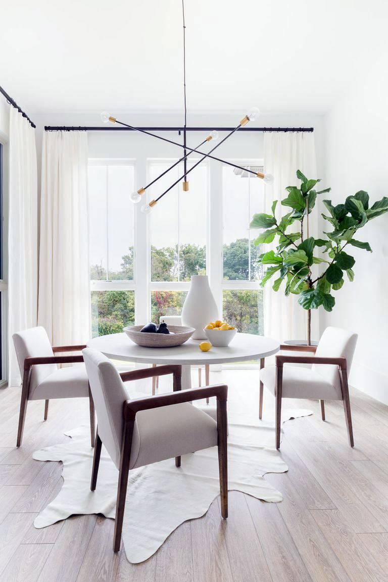 большой зеленый фикус в белом интерьере столовой комнаты