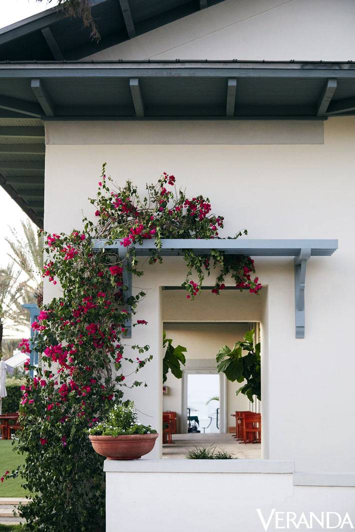 внутренний двор отеля уютный с плетеными цветами