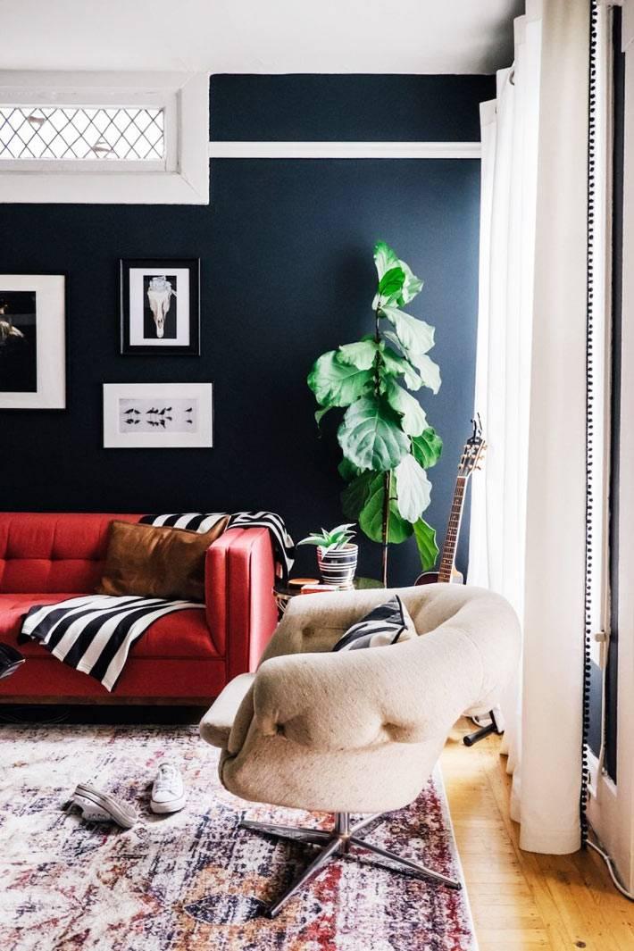 темно-синяя стена гостиной комнат и красный диван на ее фоне