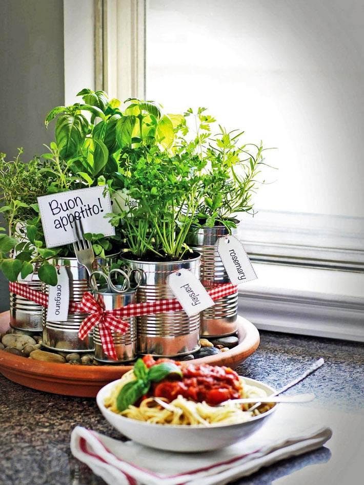 розмарин и другие свежие травы в жестяных банках на кухне