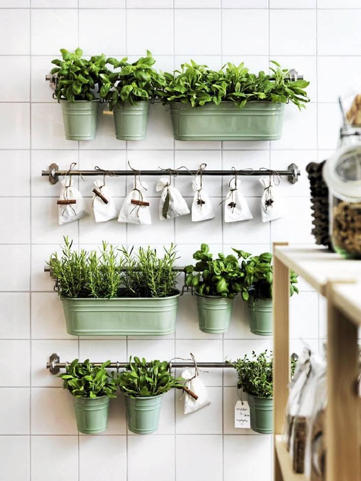 зеленые металические кашпо на рейлингах для выращивания трав на стене