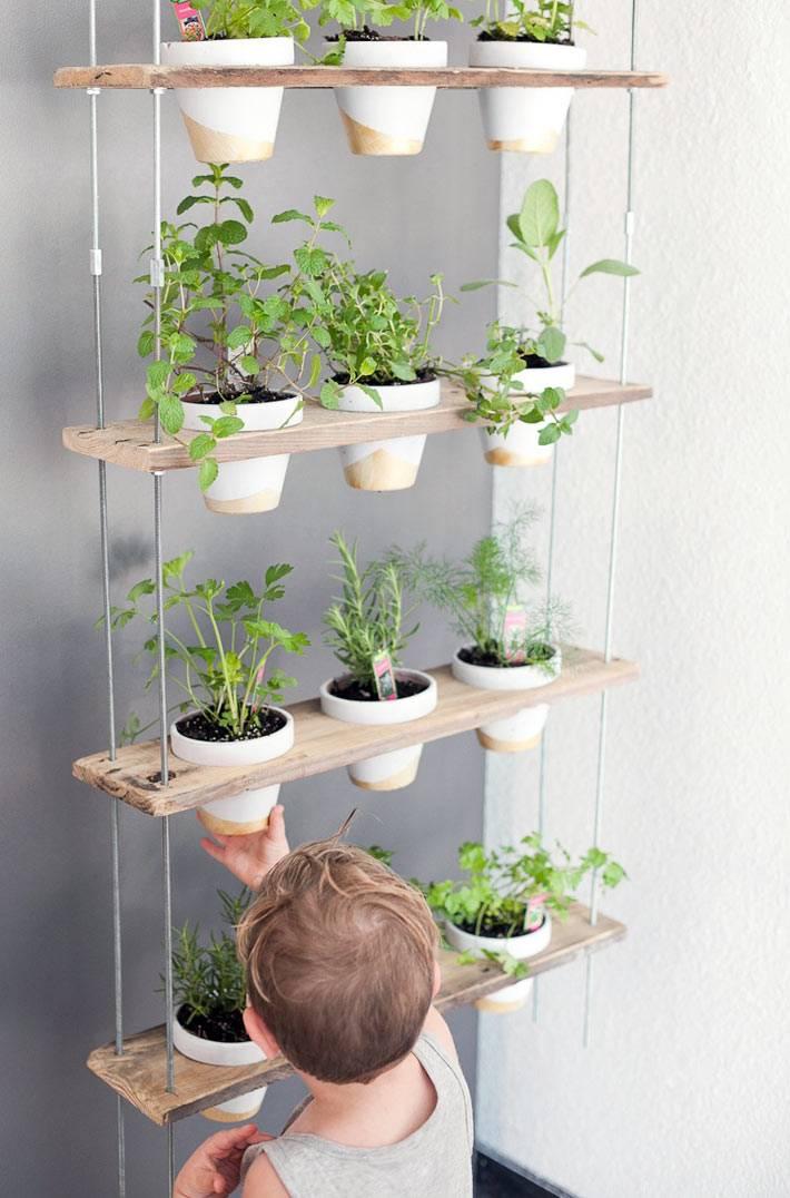 подвесная полка для горшочками для выращивания трав для салатов