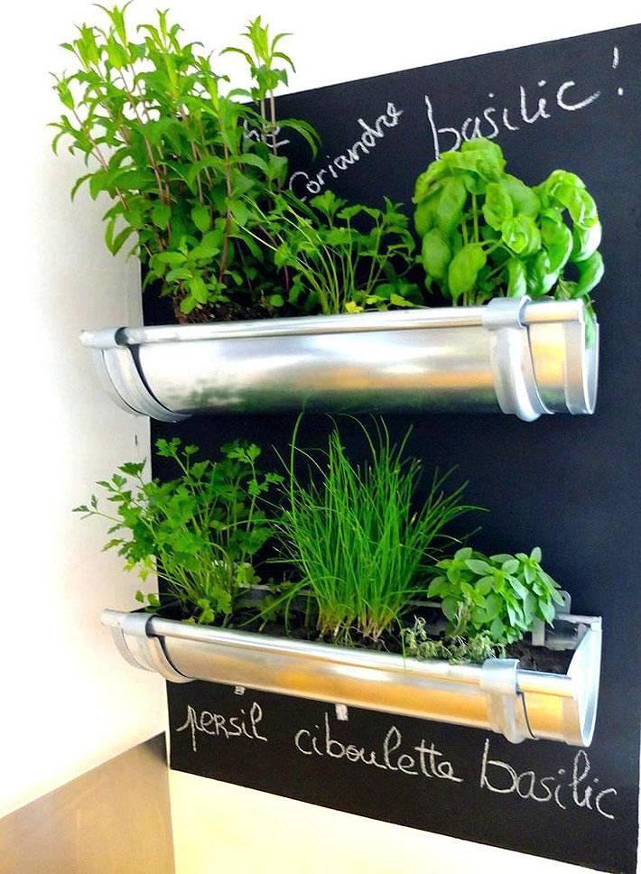 креативная идея как оформить домашний мини-огород на стене