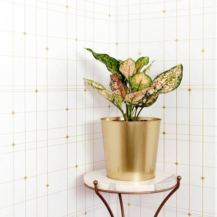 подставка для цветка с золотистыми медными ножками