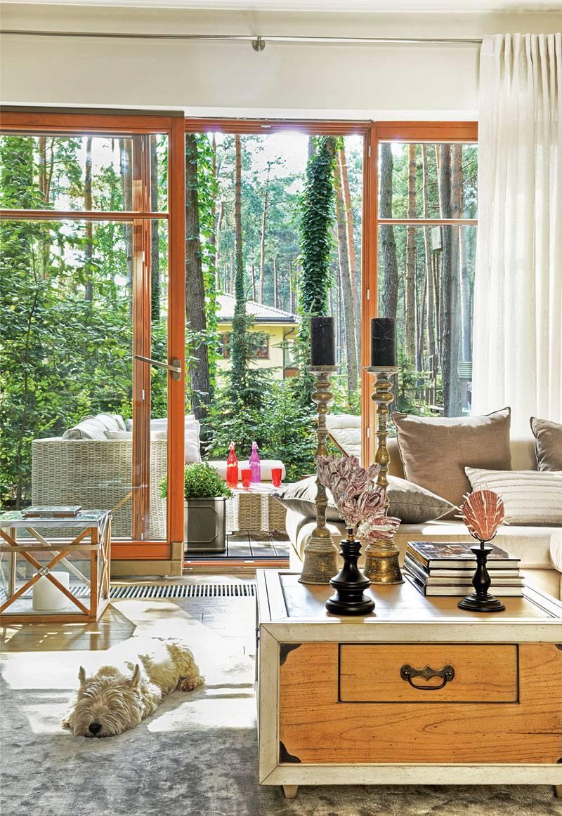 дом со стеклянной стеной среди деревьев в лесу, Польша