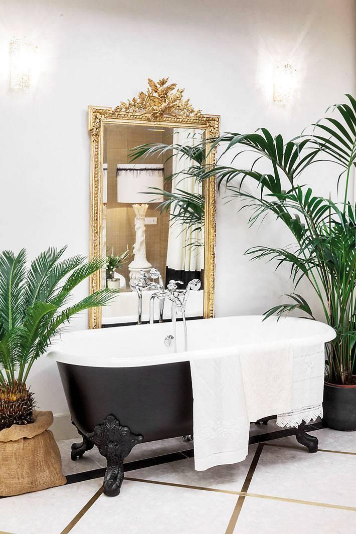 большие комнатные растения в красивой ванной комнате