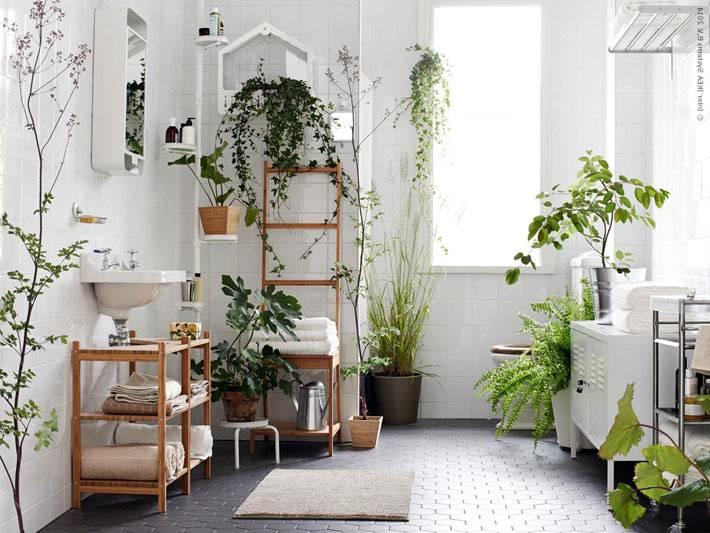 даже в маленькой ванной комнате можно разместить небольшой сад из цветов