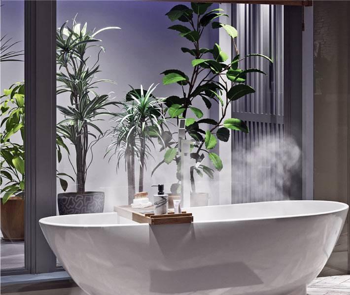 стена из живых растений создает ощущение сада внутри помещения