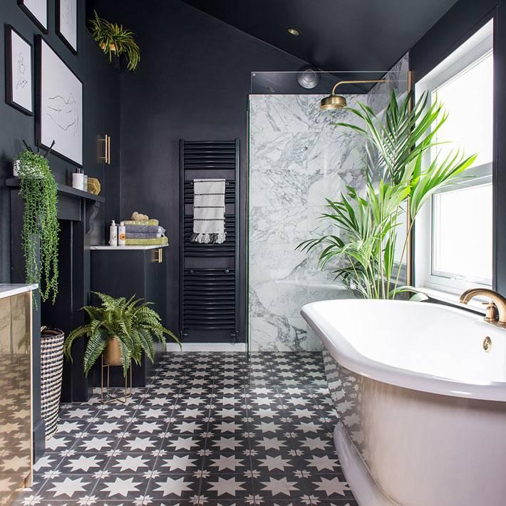 зеленые растения на фоне черных стен ванной комнаты фото
