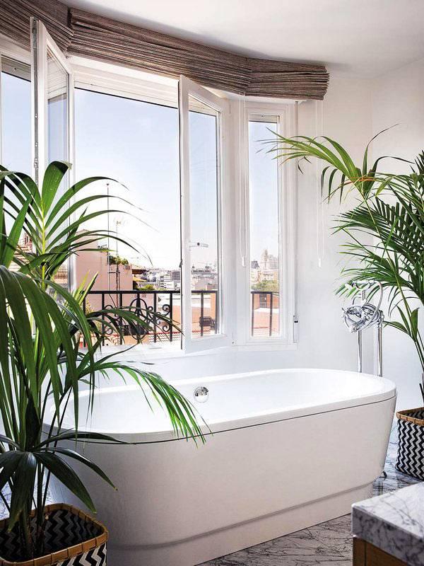 тропическая обстановка - большие зеленые растения в ванной комнате