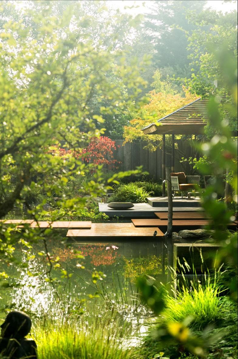 ландшафтный дизайн с прудом во дворе дома фото