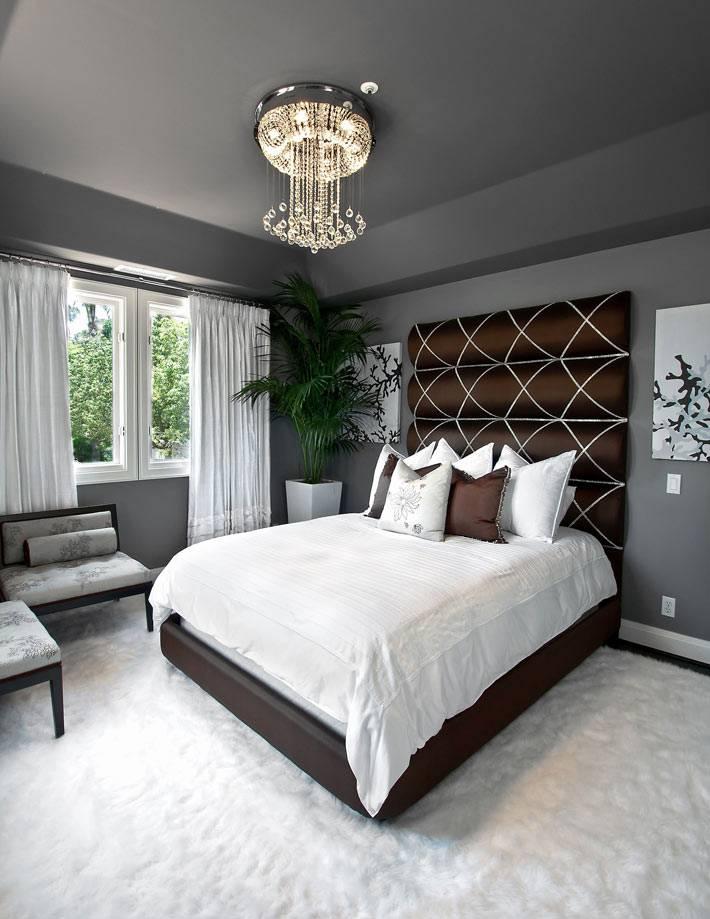 потолок и стены серого цвета в современной спальне