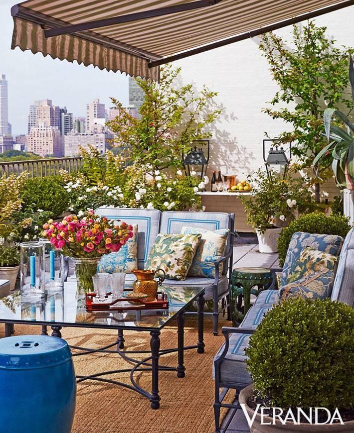 кустарники и декоративные деревья на открытой террасе в квартире