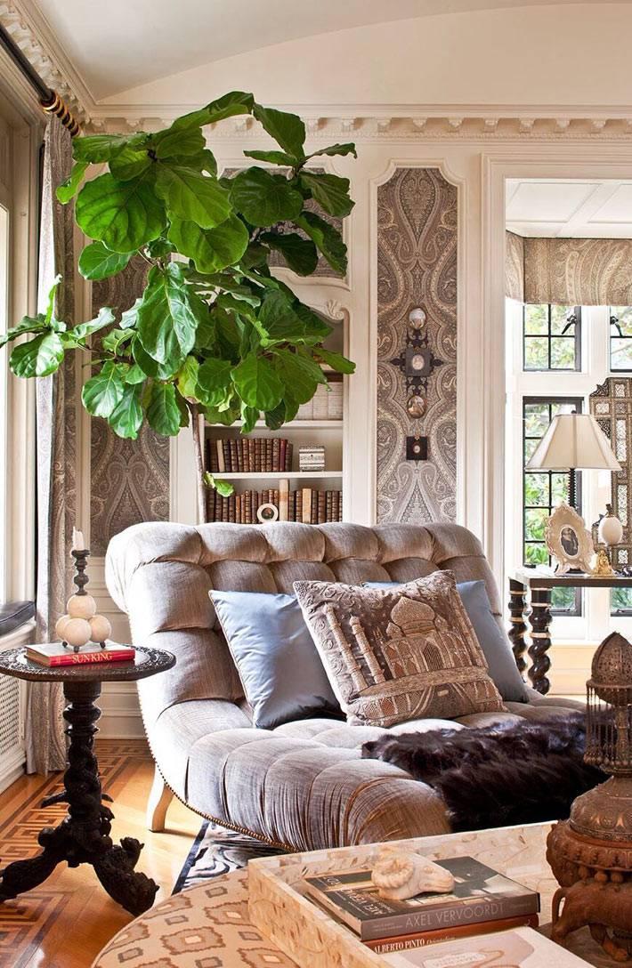 красивый интерьер комнаты с декоративным фикусом лират