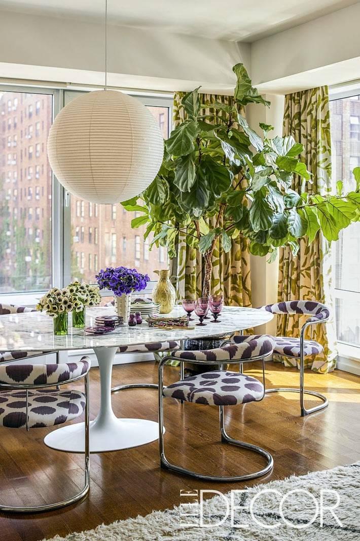 солнечная столовая комната с пёстрыми стульями и большим деревом