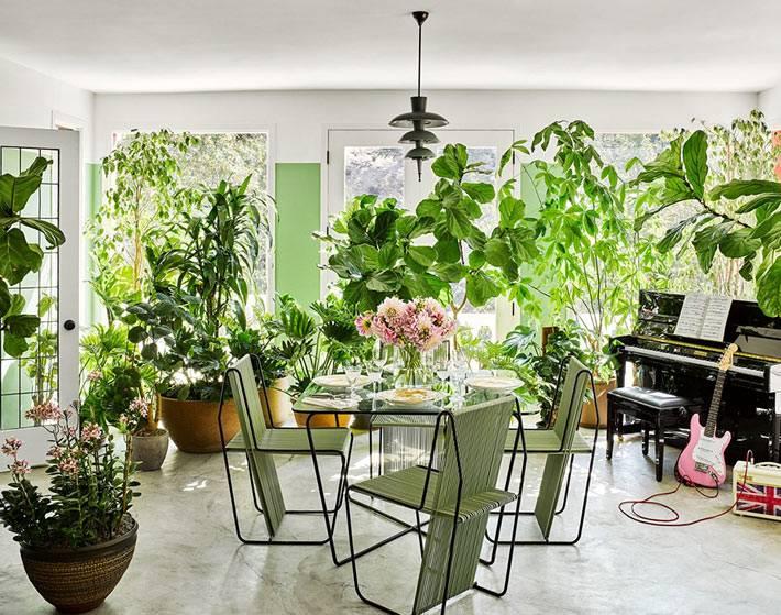 комната-зимний сад с большими зелёными растениями