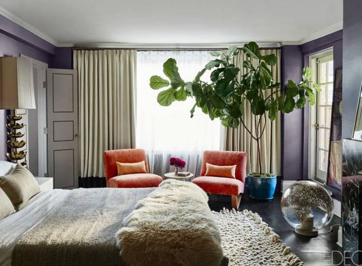 спальня с фиолетовыми стенами и оранжевыми креслами фото