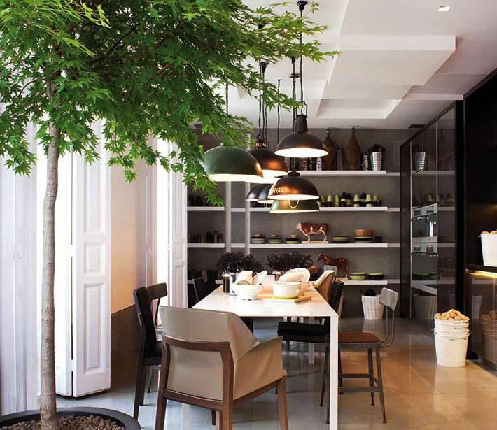 зеленое комнатное дерево в кадке добавляет уюта кухонной зоне