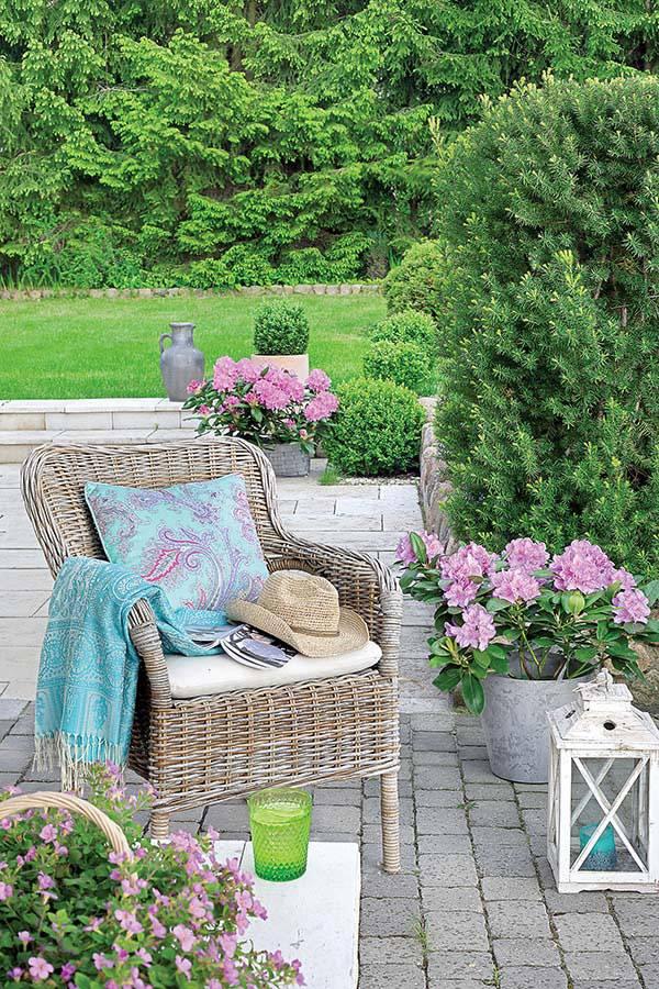 територия вокруг дома утопает в зелени травы, цветов и деревьев