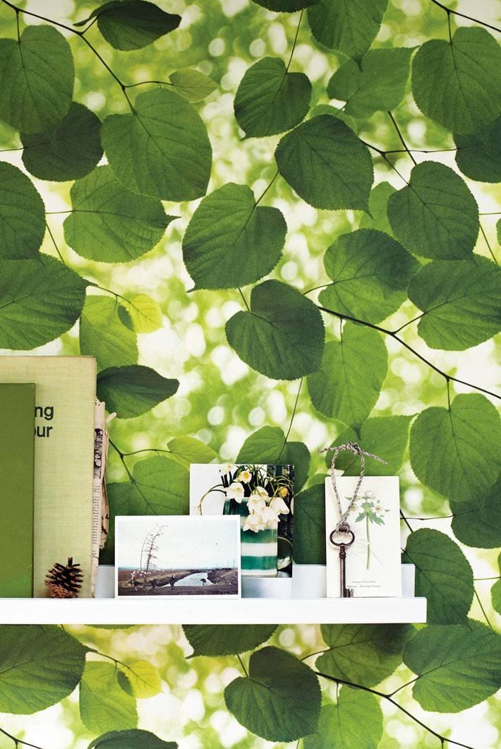 фотообои природа - изображение листьев на солнце