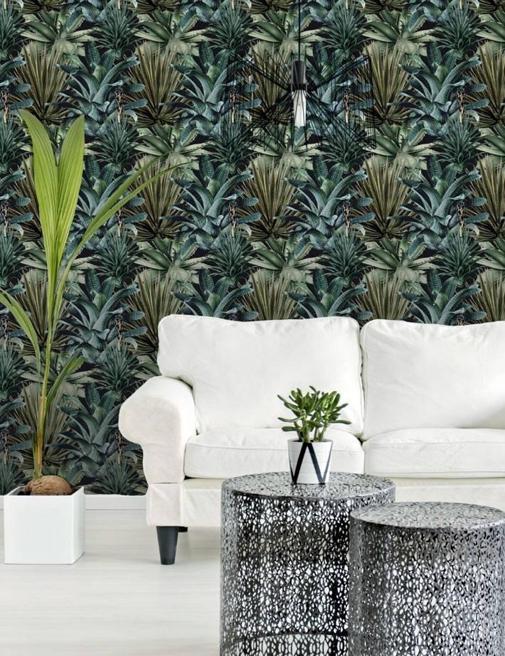 фотообои с изображением джунглей и тропических листьев