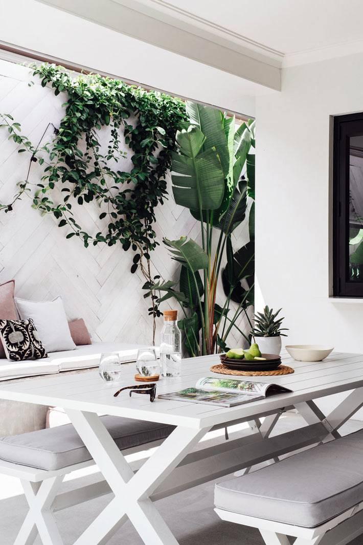 маленький дворик в белом оформлении с зелёными растениями