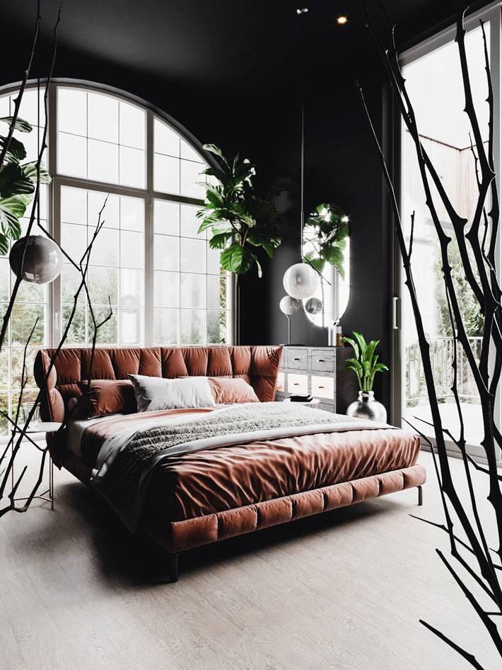 большие комнатные растения вокруг кроавати в спальне фото