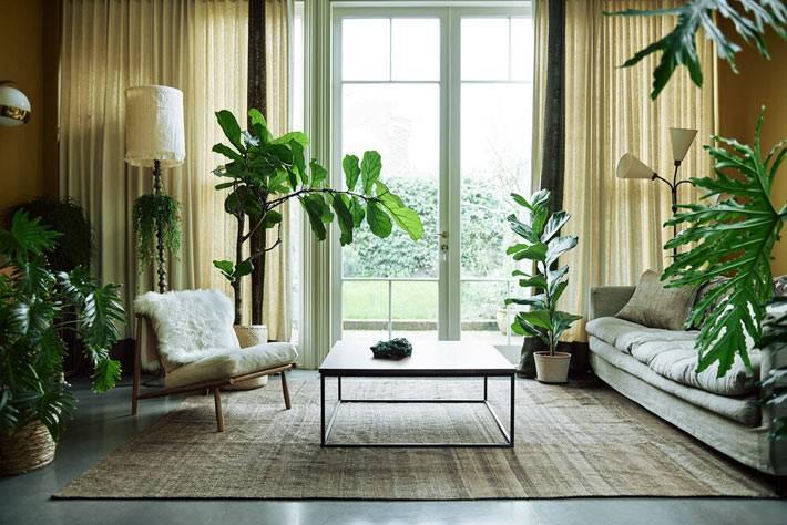 в зоне гостиной полно больших зеленых растений фото
