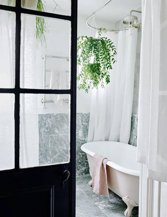 вьющиеся живые растения над красивой чашей ванной