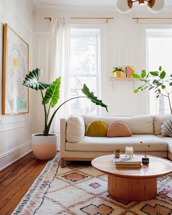 большое растение в кадке возле дивана, круглый журнальный стол