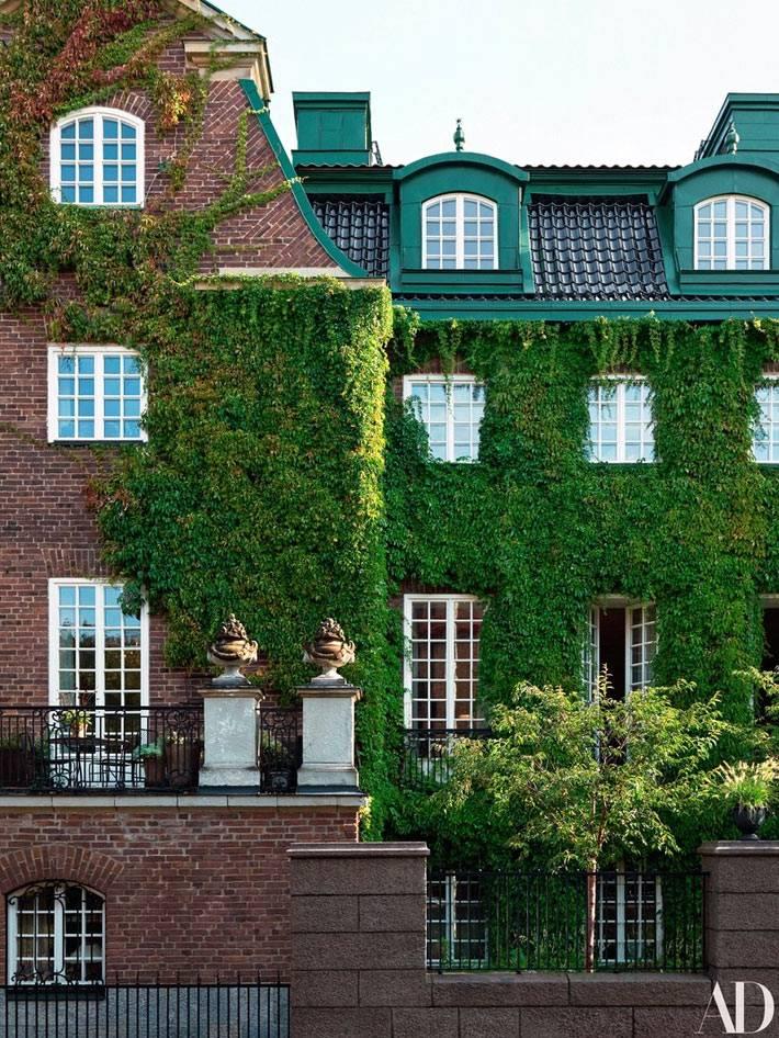 фасад исторического дома, увитяый зеленым плющом фото