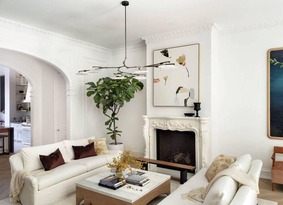 живое комнатное дерево в углу комнаты возле камина